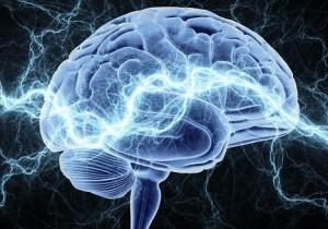 Какая структура мозга позволяет нам учиться во сне?