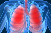 apnoe-na-vsarmeyskoy-konferentsii-po-pulmonolgii